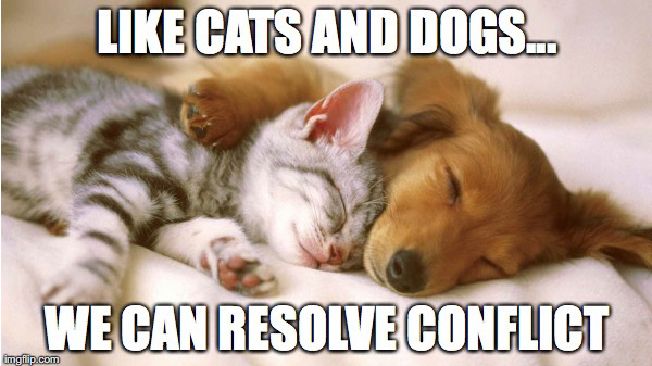 Friday Meme Conflict Resolution Resonate Pictures